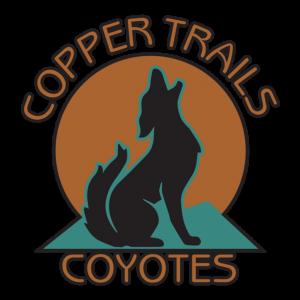 CTS - Logo